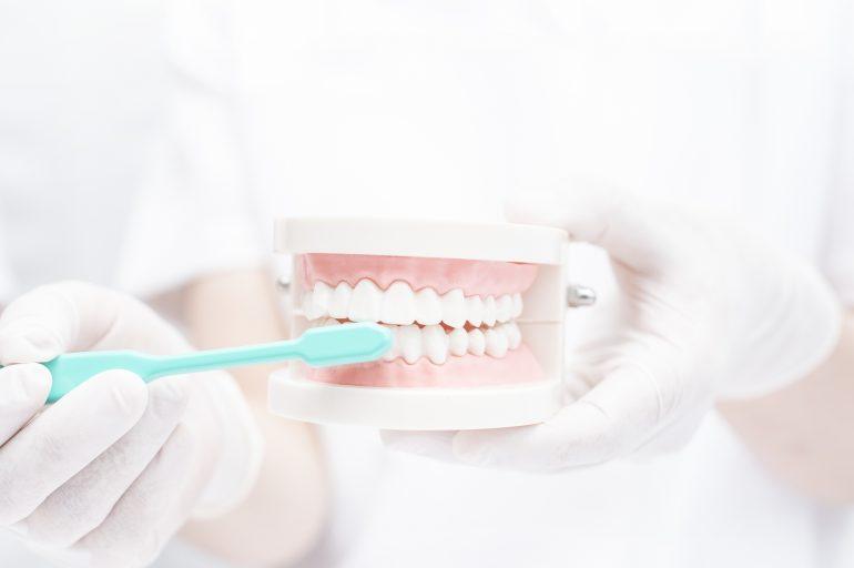 きちんと歯みがきをしていればむし歯にならない?